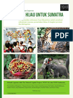 A Green Vision for Sumatra - Report Summary Ind