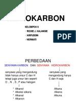 Hidro-karbon
