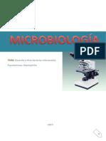 Nocardia y Otras Bacterias Relacionadas