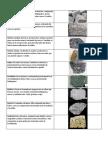 Caract. Rocas y Minerales