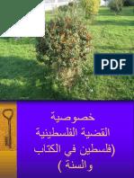 خصوصية القضية الفلسطينية الاساسي