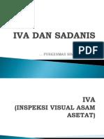IVA DAN SADANIS.pptx