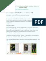 Secuencia Didáctica 1 Atlas Ambiental