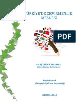 Türkiye'de Çevirmenlik Mesleği Rapor