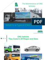 Cng Maintenance Guide