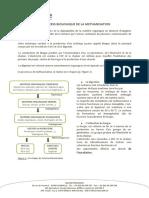 Le Process Biologique de La Methanisation (1)