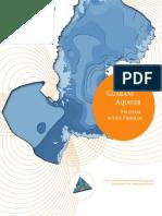 Strategic Action Program SAP Guarani