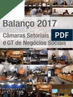 Balanço Câmaras Setoriais e GT de Negócios Sociais