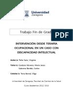 TAZ-TFG-2013-700