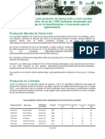 8.ANALISIS-SECTORIAL-SACHA-INCHI.pdf