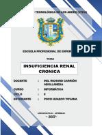 Insuficiencian Renal Cronica