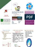 267371795-Leaflet-Diare.pdf