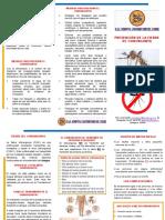 chikungunya20-20folleto-150507225552-lva1-app6892.pdf