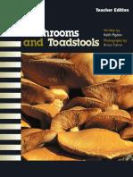 AlphaWorld L14 TE Mushrooms and Toadstools