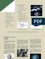 TEMA 1 -Introducción a las Redes Neuronales