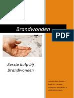 brandwonden cursus pdf