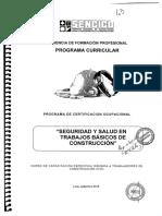 4.- Programa Curricular Cert. Ocup. Seguridad