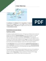 Islas Malvinas Reseña Historica