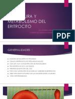 enfermedades eritrociticas