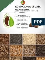 semillas-150527081626-lva1-app6892.pdf