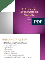 Status Gizi Berdasarkan Biokimia