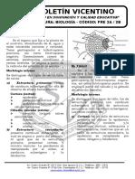 Boletín Biología 20 Pre 2a-2b Organos Vegetativos Reino Plantae i Morfología Interna