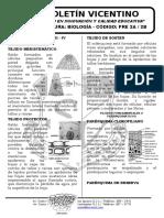 Boletín Biología 23 Pre 2a-2b Organos Vegetativos Reino Plantae III y IV Fitohormonas y Clasifica