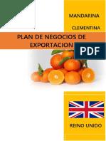 Estructura de Plan de Negocios de Exportacion