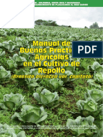 Manual de BPA en Repollo