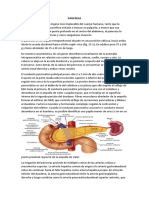 Pancreatitis Crónica Final