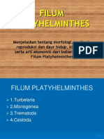 01-Platyhelminthes