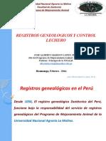 Barron Registros (2013)