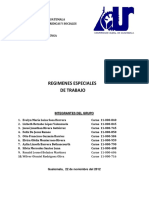 TRABAJO_FINAL_-_REGIMENES_ESPECIALES_DE.pdf