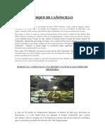 Bosque de Cañoncillo