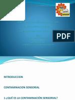 Contaminacion Sensorial 2