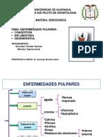 Endodoncia GRUPO 1