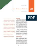 Algunas_reflexiones_acerca_del_patrimoni.pdf