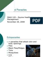 1 External Parasites