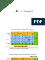 Mallas Curriculares 131117_1