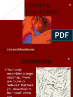7 Science Biotechnology Task Blood and Circulation