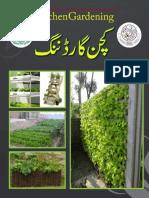 Kitchen Gardening Guide Agriculture Dept Punjab
