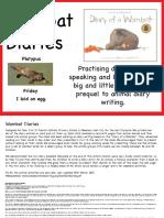 Wombat Diaries