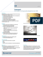 SINTEF Sand and Particle Transport