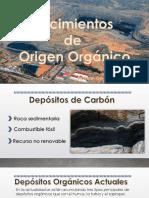 Yacimientos de Origen Orgánicos
