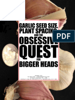 Garlic Seed Size - Plant Spacing - The Obsessive Quest for Bigger Heads