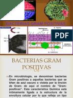 Bacterias Gran Positivas EXP