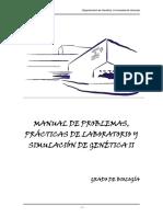Manual Pract GII