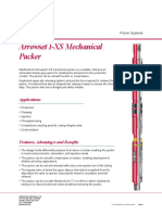 2558_Arrowset-I-XS-Injection-Packer.pdf