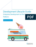 Salesforce Development Lifecycle (1)