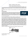 Biologia - Aula 01 - Organelas Celulares e Nucleo _ Parte II - 2017020914184435